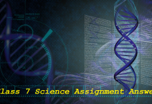 Class 7 Science Assignment