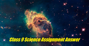 Class 9 Science Assignment