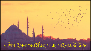 Dakhil 2021 History of Islam Assignment Answer